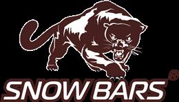 леопард, снежный Барс, разрешение изображения | 148x260
